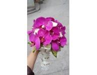 Hoa Cầm Tay MS16