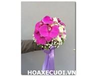 Hoa Cầm Tay MS52