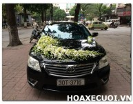 HOA XE CƯỚI MS 102