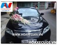 HOA XE CƯỚI MS 116
