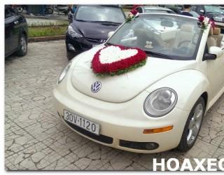 HOA XE CƯỚI MS 133